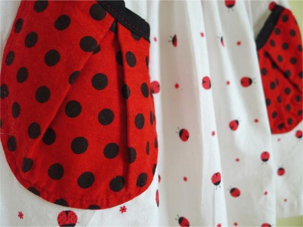ladybug dress 3